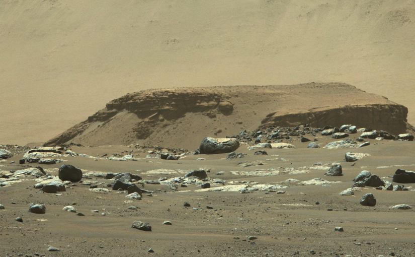Investigating Leadership for Crewed Missions to Mars – The eMBA Papers